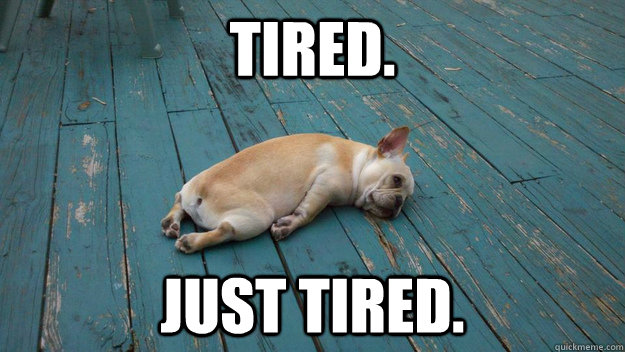 Image result for too tired to work